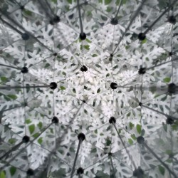 Vue de bruyère à l'intérieur du kaléidoscope Huckleberry