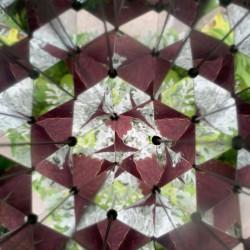 Vue d'une feuille à l'intérieur du kaléidoscope Huckleberry