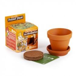 Kit Cacahuètes à faire pousser - Radis et Capucine