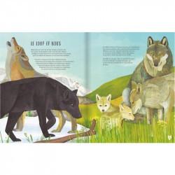Le Loup - Glénat extrait 1