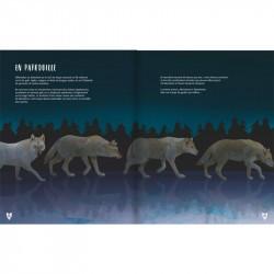 Le Loup - Glénat extrait 4