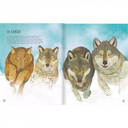 Le Loup - Glénat extrait 3