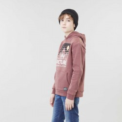 Picture Organic Clothing - sweat a capuche Fasty hoodie