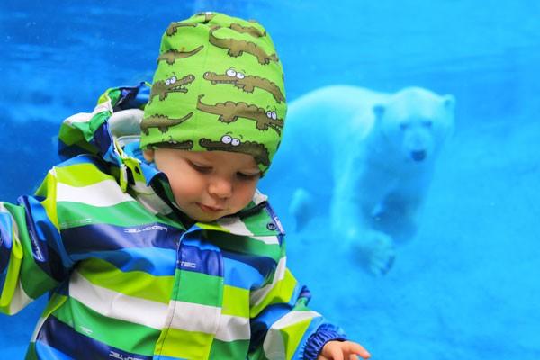 Voyage-au-Quebec-en-famille-zoo-saint-felicitien