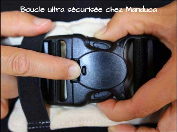 Manduca-boucle-ventrale