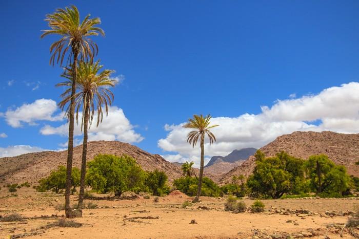 Voyage-famille-Maroc-anti-Atlas-oued