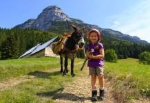 Randonnée en famille avec des ânes