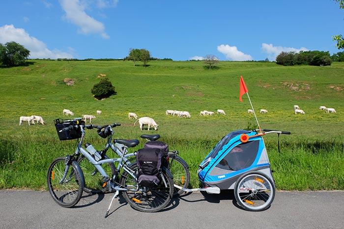 les deux vélos et la carriole arrêtés au bord d'un pâturage.