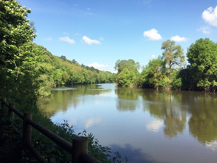 le chemin sur les bords de la Mayenne