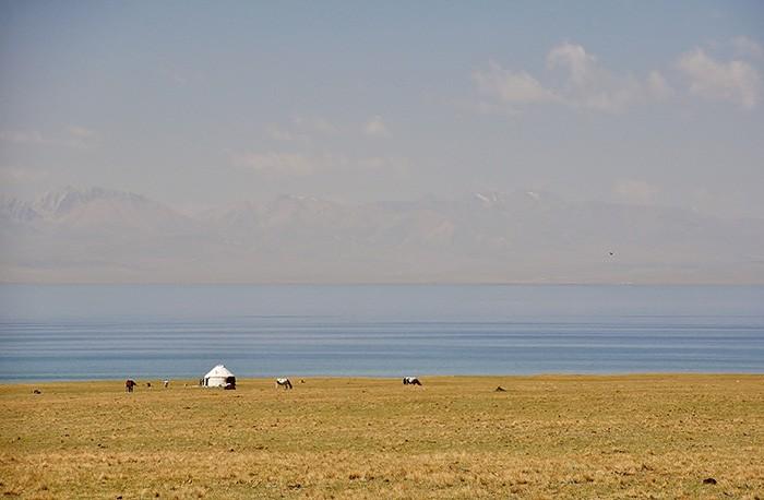 yourte et chevaux au bord d'un lac au Kirghizstan