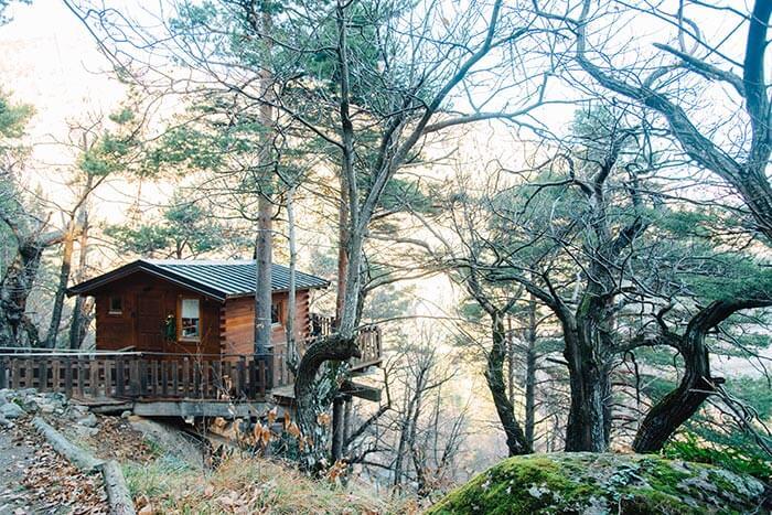 cabane dans les arbres proche  du village de Tende