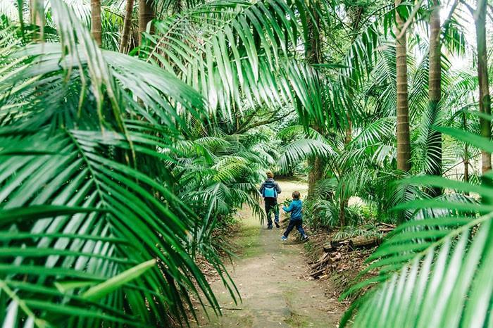 famille qui se promène dans le jardin botanique de Furnas aux Açores