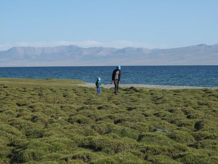 Lac Son Kul famille enfant paysage Kirghizistan nature sauvage balade