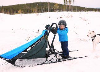 Voyage Laponie en famille