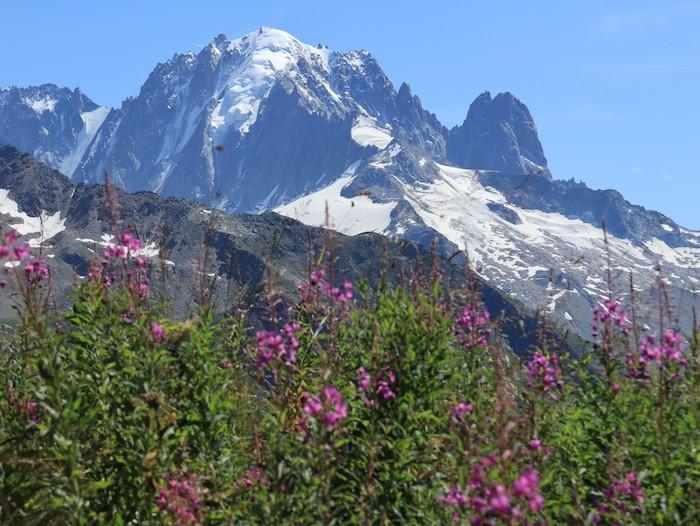 Randonnée en famille paysage Mont Blanc