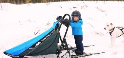 La Laponie en famille et en hiver entre chiens de traineau, balades à cheval et pêche blanche, un séjour comme dans un rêve !