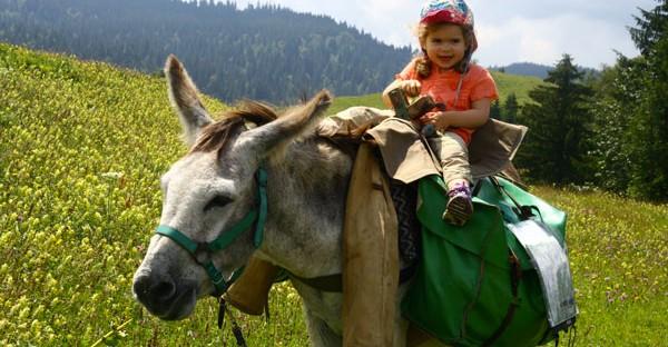 Randonnée avec un âne et des enfants