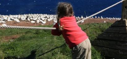 Voyage au Québec en famille : 10 activités à faire absolument avec les enfants