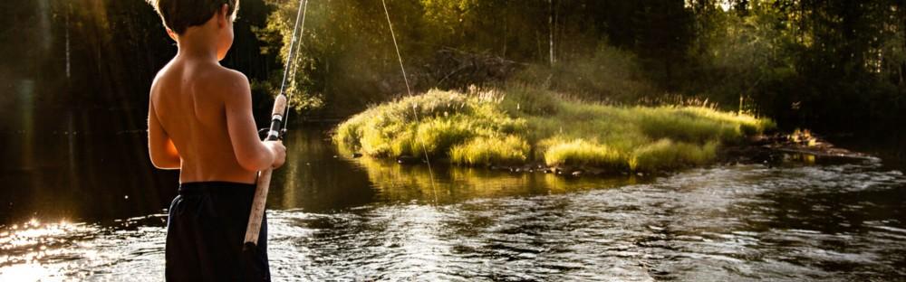 La Laponie en famille et en été, loin des foules et au coeur de la nature