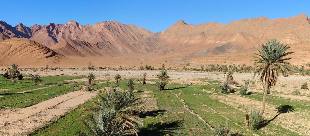 Vallée des Cèdres, Maroc en famille